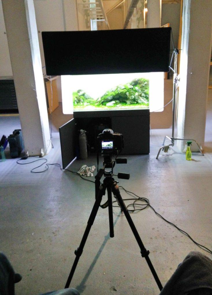 Vorbereitung für den Final Shot des Aquascapes