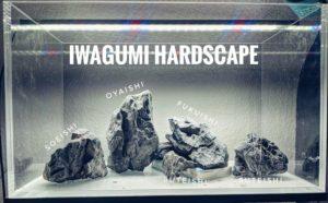 Was ist Iwagumi?