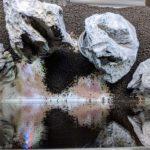 Aufbau eines Iwagumi Aquascapes mit ADA Aqua Soil, Steinen und Bodenzusatz von JBL