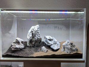 Iwagumi Aufbau mit Soil.