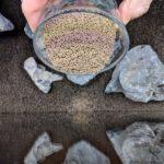 Aquarium Aqua Soil