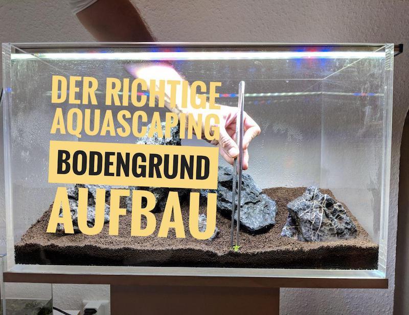 Aquascaping Bodengrund Aufbau – So gelingt das erste Aquascape ✅