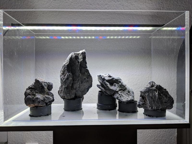 steine im aquarium festkleben