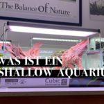 Shallow oder Flat Aquarium